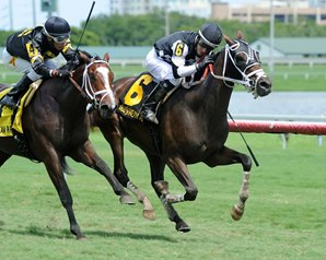 Photo: Coglianese Photos/Lauren King Whiskey Train (inside) winning the Oct. 1 Armed Forces at Gulfstream Park